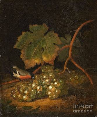 Still Life With Grapes And A Bullfinch Art Print by MotionAge Designs