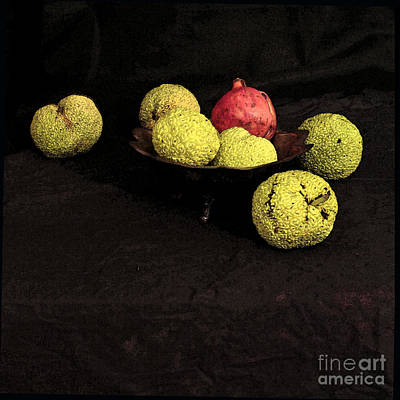 Still Life With Horse Apples Art Print