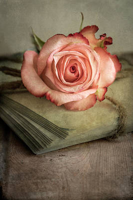Photograph - Still Life With Old Books And Fresh Pink Rose by Jaroslaw Blaminsky