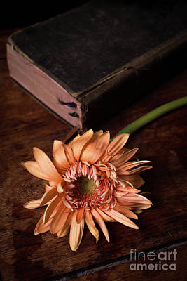 Still Life With Orange Flower And Old Bible Art Print by Edward Fielding