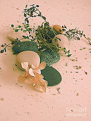 Photograph - Still Life With Pebbles by Nancy Kane Chapman