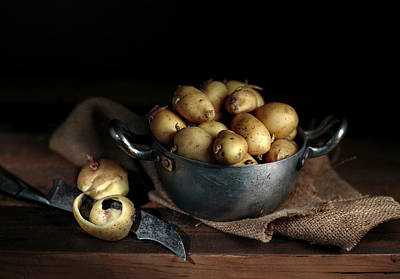 Potato Wall Art - Photograph - Still Life With Potatoes by Nailia Schwarz