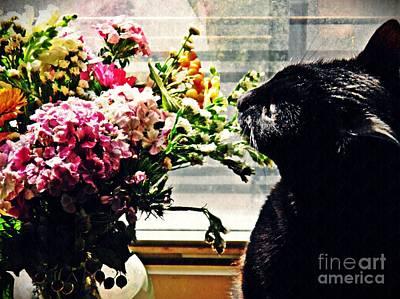 Photograph - Still Life With Sheba 1 by Sarah Loft