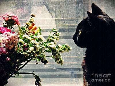 Photograph - Still Life With Sheba 2 by Sarah Loft