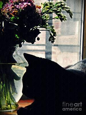Photograph - Still Life With Sheba 5 by Sarah Loft