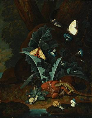 Forest Floor Painting - Still Life With Snails by Johann Falch