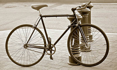 Photograph - Still Life With Trek Bike In Sepia by Ben and Raisa Gertsberg