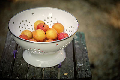 Still Life Royalty-Free and Rights-Managed Images - Still Life with Yellow Plums  by Nailia Schwarz