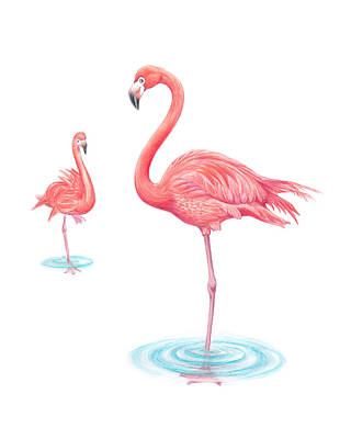 Flamingo Drawing - Still Standing by Studio Figs