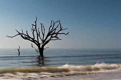 Photograph - Still Standing  by Thomas Pettengill