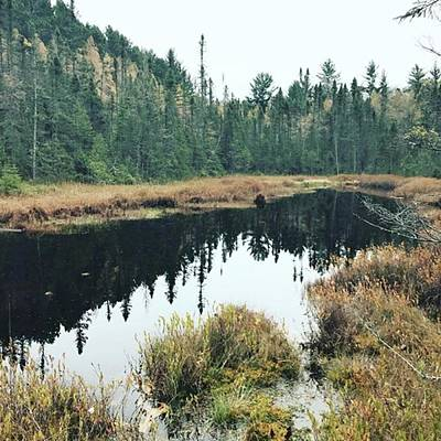 Marsh Photograph - Still Waters by Jessica Mayer Kaul