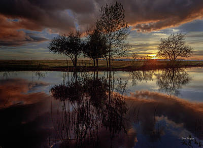 Photograph - Stilllness Reflected by Tim Bryan