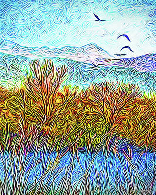 Digital Art - Stillness In Motion - Birds Over Colorado Pond by Joel Bruce Wallach