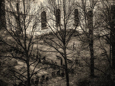 Photograph - Stillness In The Courtyard by Robin Zygelman