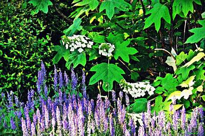 Photograph - Stillness In The Garden   by Sarah Loft