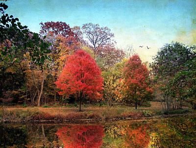 Autumn Foliage Photograph - Stillness Speaks by Jessica Jenney