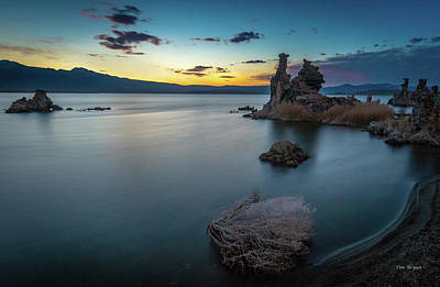 Photograph - Stillness...mono Lake by Tim Bryan