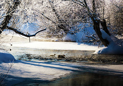 Photograph - Stillwater Winter by Robert McKay Jones