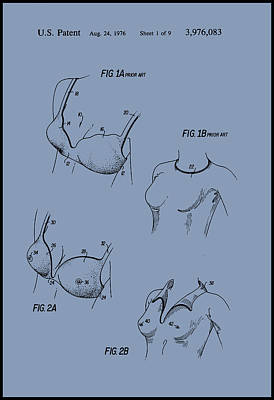 Painting - Stimulated Nipples Bra by Patent Drawing