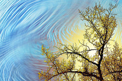 Digital Art - Stimulo-cirrus by Becky Titus