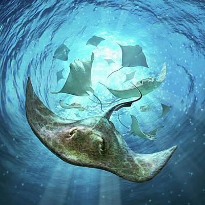 Swimming Digital Art - Sting Rays by Jerry LoFaro