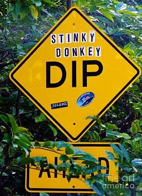 Photograph - Stinky Donkey Dip St. John Usvi by Tamara Michael