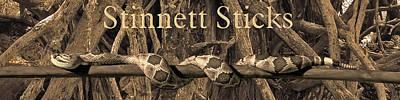 Photograph - Stinnett Sticks Logo by Mike Stinnett