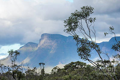 Photograph - Stirling Ranges by Werner Padarin