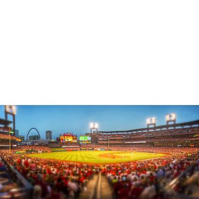 Celebrities Photograph - #stl #stlcards #stlouis by David Haskett