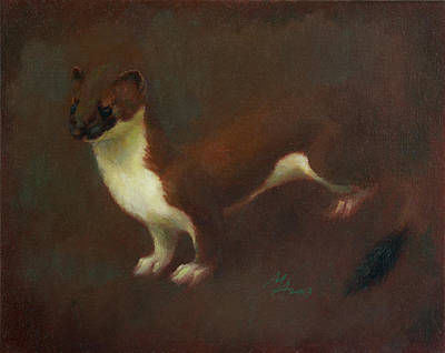Painting - Stoat Or Ermine In Summer Coat by Attila Meszlenyi