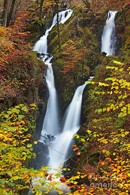 Ambleside Wall Art - Photograph - Stockghyll Force 1 The Top by Richard Thomas