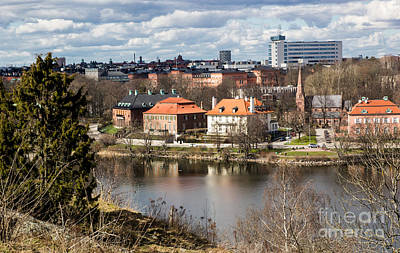 Photograph - Stockholm From Skansen by Suzanne Luft