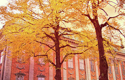 Photograph - Stockholm Hues by JAMART Photography