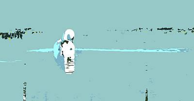 Digital Art - Swan by Mary Castellan