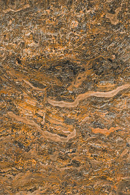 Photograph - Stone Bark Abstract by Bruce Pritchett