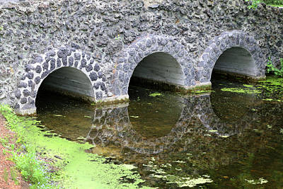 Photograph - Stone Bridge And Reflection 4 Dow Gardens 3 062618 by Mary Bedy