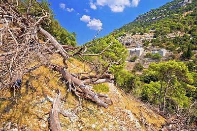 Photograph - Stone Desert Trail Near Pustinja Blaca Hermitage On Brac Island by Brch Photography