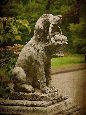 Photograph - Stone Dog Statue by Patricia Strand