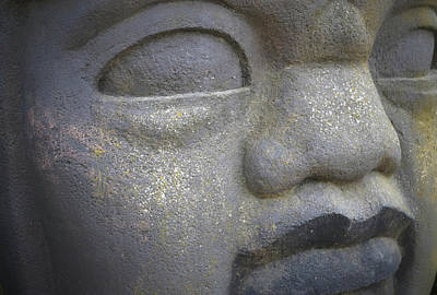 Photograph - Stone Face by Nadalyn Larsen