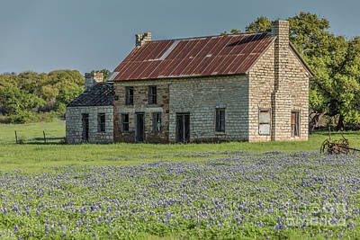 Photograph - Stone Farmhouse In A Bluebonnet Field by Teresa Wilson