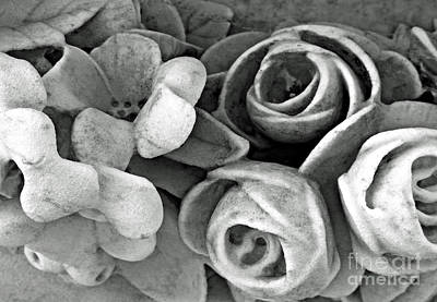 Photograph - Stone Flowers by Ethna Gillespie
