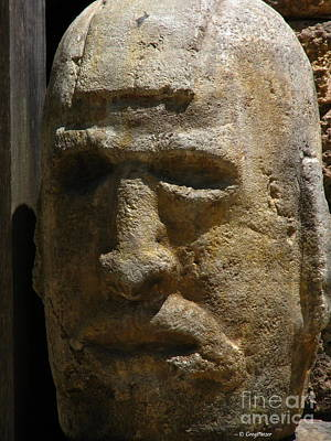 3d Work Of Art Photograph - Stone Head by Greg Patzer