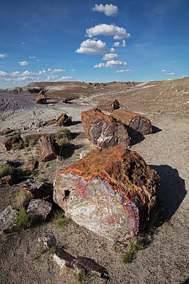 Photograph - Stone Log Smoke Signals by Tom Daniel