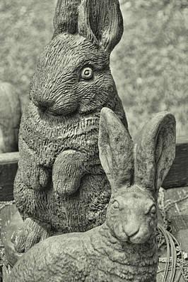 Stone Bunnies Art Print by JAMART Photography