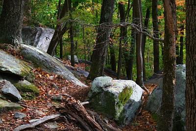 Photograph - Stone Mountain Rocks by Kathryn Meyer