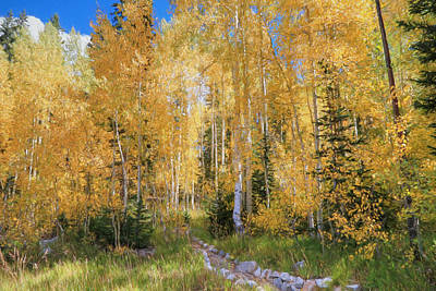 Big Cottonwood Canyon Photograph - Stone Path by Donna Kennedy