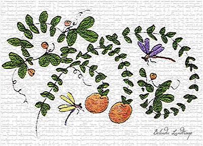 Belinda Landtroop Royalty-Free and Rights-Managed Images - Stone Peach by Belinda Landtroop
