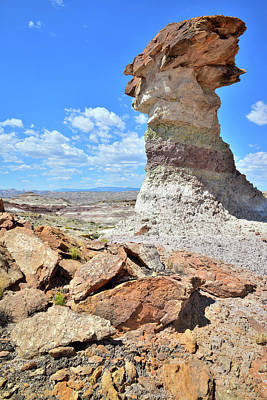 Photograph - Stone Pillar In Capitol Reef Desert by Ray Mathis