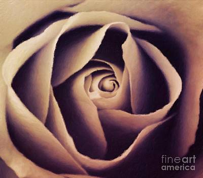 Roses Royalty-Free and Rights-Managed Images - Stone Roses by Sarah Kirk