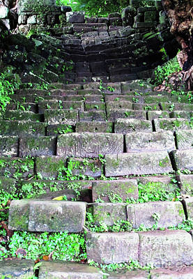 Photograph - Stone Staircase by Ethna Gillespie